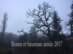voeux-2017-copie